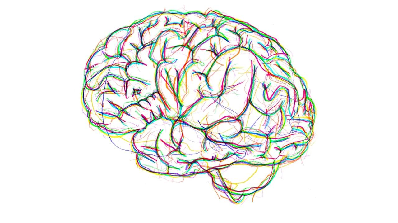 Eye Movement Desensitisation and Reprocessing (EMDR) brain graphic